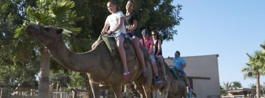Cypr - Larnaca - adventure camp