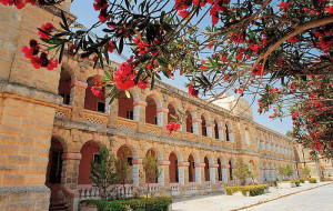 Malta – St. Julian's – 14-21 lat
