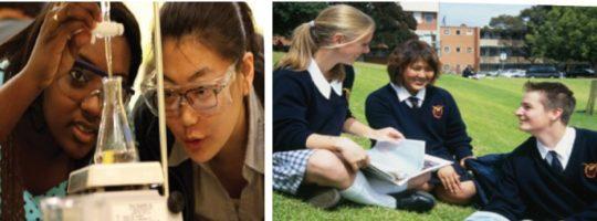 Anglia – szeroka oferta szkół państwowych