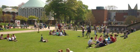 Brighton - University of Sussex - Intensywny kurs dla zaawansowanych