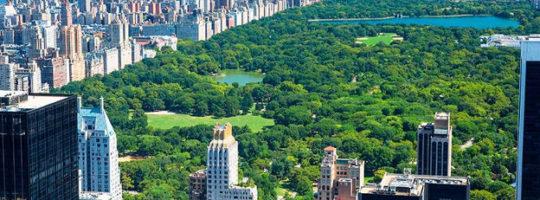 New York szkoła językowa - Manhattan - Central Park